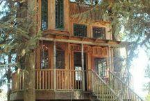 Terrific tree houses