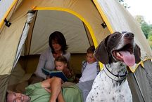 Tramping and Backpacking with Dogs