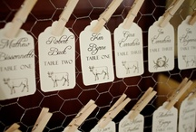 Wedding Escort Card Ideas / by Tara Skinner