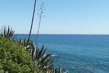 Impressions from Liguria / Discover the beauty of Liguria