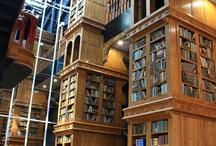 図書館・図書室・本屋・本