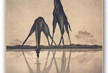 Giraffes / by Kenzie Gasca