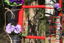Ladderforviolets / outdoors