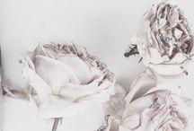 in bloom III ❥