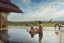 African Safaris Adventures / Expect the unexpected! This is Africa