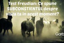 Test Freudian