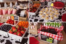 Farm party inspiration - 3rd bday