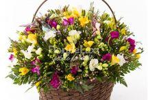 Cosuri flori - FlorideLux.ro