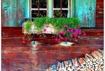 ferestre, uși, porți și garduri