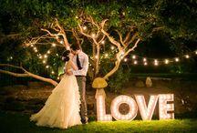 Wedding theming / Theming inspo!