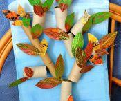 VV nápady podzim