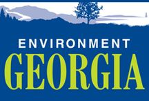Georgia Environmental Groups / The State of Georgia has many beautiful natural resources and many environmental groups that are trying to protect such resources. #georgia #environment #georgiagreen