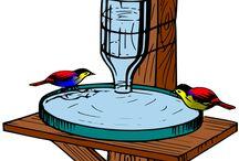 Bebedouro de pássaros