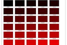 RGB Katalog / Miracle Colorway AİT pantone RGB Katalog
