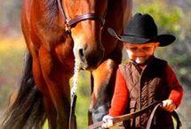 little kids traning horses