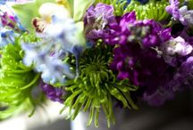 jewel toned bouquets