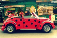 Punch Buggy / My favorite car / by Madison M.