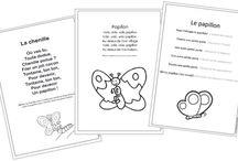 Theme: Butterflies/ Papillons