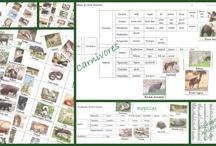 Apologia Science - Zoology 3 - Land Animals