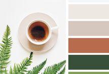 renk uyumu/colour palettes