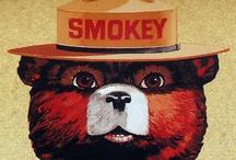 SMOKEY BEAR / by Brenda Veeder