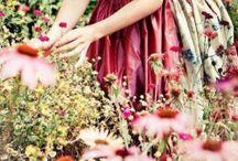 Cranberry ♡Lane