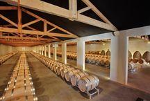 Château Marquis de Terme / visite du vignoble et des chais au Château Marquis de Terme à Margaux Bordeaux Réservez avec winetourbooking.com
