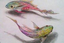 rybišky
