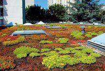 strešné záhrady / o strechách a tak - intenzívne, extenzívne