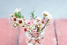 Trouvailles Pinterest: Bonjour printemps! / Chaque vendredi, nous vous présenterons ce qui nous a inspiré sur Pinterest durant la semaine. Chronique présentée sur un thème précis, par un invité spécial ou simplement par l'inspiration du moment.