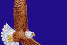 Eagle Embroidery Designs