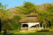 Day Picnic Near Delhi Ncr / www.damdamalakegurgaon.com provides best deal of day outing packages.