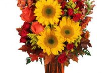 Fall Kick-off Arrangements / Three cheers for autumn! This collection of fall colored flowers is a great blend of vibrance and energy for any fall-themed occasion.