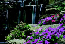 Indiana (EE.UU. / USA) / Tablero en Pinterest donde hallarás lugares pintorescos y significativos captados en cualquier rincón de Indiana. / by Eduardo González Palomar