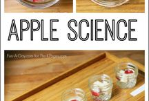 First Grade Science / Science ideas, activities and printables for your first grade curriculum.