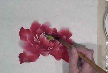Розовые пионы-акварель Вирджиния Ллойд-Дэвис