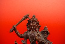 Bodhisattva Project
