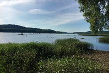 Susquhanna River Darlingtion MD