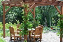 Sonnenschirm aus Pflanzen