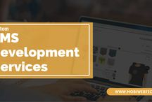 Custom CMS Development Service