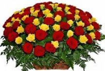 Order Online Flowers To Vizag, Door Delivery Of Flowers Visakhapatnam / Vizagfood.com is Offer Online Flower Fast Delivery Carnations in vizag, Heart Shape Roses, Flower Baskets, Online Rose delivery in vizag Visakhapatnam