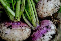 GARDEN: Vegetables / Odla dina egna grönsaker och skörda underbart god mat! Grow your own veggies and eat lovely food!