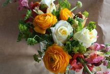 Bouquets and Centerpieces / by Anne Schmidt