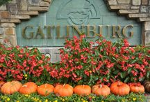 Dining in Gatlinburg! / Everyone wants to eat somewhere nice on vacation! Check out our favorites... who knows, it might become yours too!