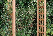 арки  и перголы в саду