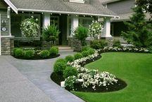 front house landscape