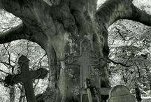 Cemeteries & Headstones
