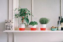 Lovely home ideas