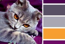 Värejä - Colors
