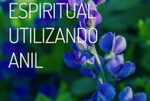 Limpeza espiritual